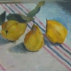 Quinces on Striped Cloth